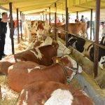 Национално изложение по животновъдство